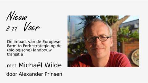 NV#11 – 28 september: Michaël Wilde